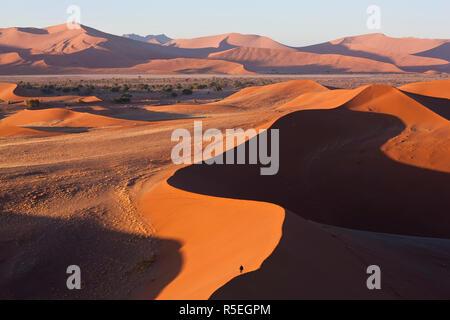 Man climbing sand dunes, Namib Naukluft National Park, Namibia - Stock Photo