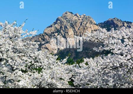 Democratic Peoples's Republic of Korea (DPRK), North Korea, Kumgang mountains - Stock Photo