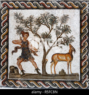 Roman mosaic, Bardo museum, Tunis, Tunisia - Stock Photo
