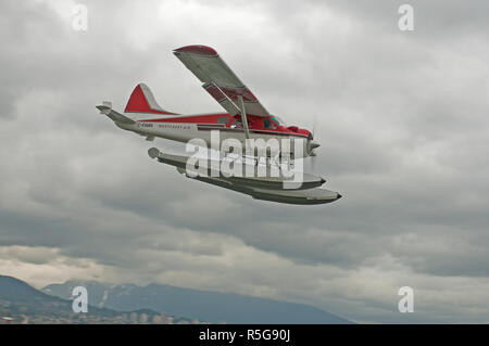 A de Havilland DHC2 Beaver floatplane making its approach to the waterways of Vancouver city Harbour in BC Canada. - Stock Photo