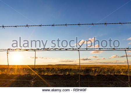 Looking though a barbed wire fence of a farming property, across empty fields and into the late afternoon golden sun.  New South Wales. - Stock Photo