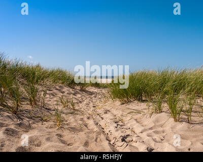 Dune covered with grass and some footprints in the front of the noth sea at the beach on the island Texel in the Netherlands