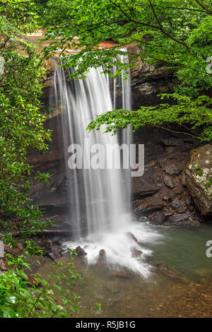 Flowing toward the nearby Youghiogheny  River, the  waters of Cucumber Run plunge over a tall cliff in Pennsylvania forest of Ohiopyle State Park. - Stock Photo