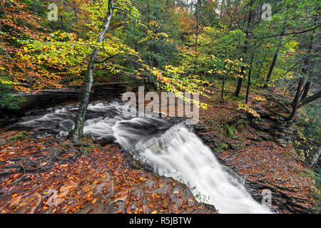 A woodland creek turns a corner and splashes down Ganoga Falls, the tallest waterfall in Pennsylvania's Ricketts Glen State Park, seen here in the mid - Stock Photo