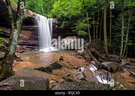 Cucumber Falls plunges over a cliff in the woods of Pennsylvania's Ohiopyle State Park on its way to the nearby Youghiogheny River. - Stock Photo