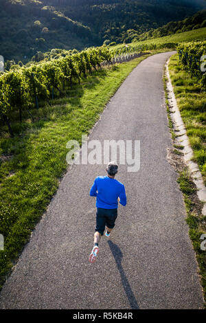 jogger in the vineyards,view from above - Stock Photo