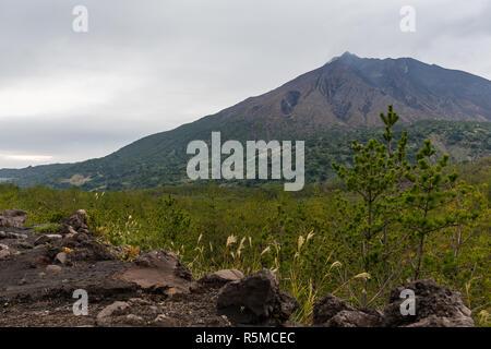 Sakurajima in Japan - Stock Photo
