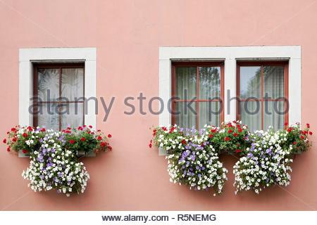 Beautiful flower baskets beneath windows in Rothenburg - Stock Photo