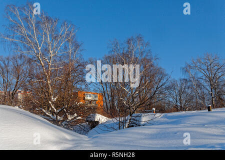 Scenic image of spruces tree. Frosty day, calm wintry scene. Ski resort. Explore the beauty of earth. Country house in winter weather, a lot of snow and sunny. - Stock Photo