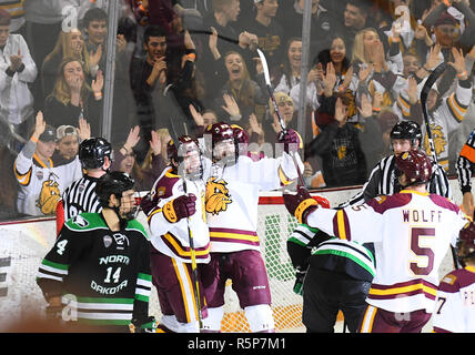 December 1, 2018 Minnesota Duluth players celebrate a goal during a NCAA men's ice hockey game between the University of North Dakota Fighting Hawks and the Minnesota Duluth Bulldogs at Amsoil Arena in Duluth, MN. North Dakota won 2-1. Photo by Russell Hons/CSM - Stock Photo