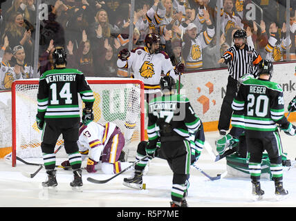 December 1, 2018 Players look to the referee as he signals a Minnesota Duluth goal during a NCAA men's ice hockey game between the University of North Dakota Fighting Hawks and the Minnesota Duluth Bulldogs at Amsoil Arena in Duluth, MN. North Dakota won 2-1. Photo by Russell Hons/CSM - Stock Photo
