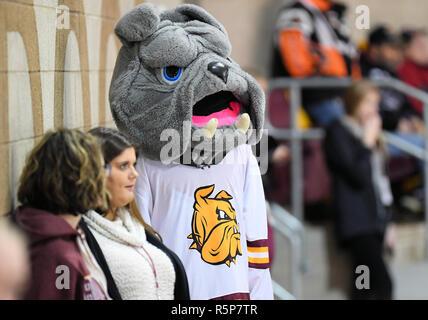 December 1, 2018 The Minnesota Duluth Bulldog mascot looks on during a NCAA men's ice hockey game between the University of North Dakota Fighting Hawks and the Minnesota Duluth Bulldogs at Amsoil Arena in Duluth, MN. North Dakota won 2-1. Photo by Russell Hons/CSM - Stock Photo