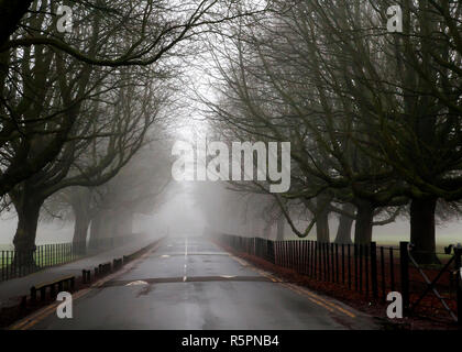 a very misty foggy atmospheric road leading into the unknown - Stock Photo