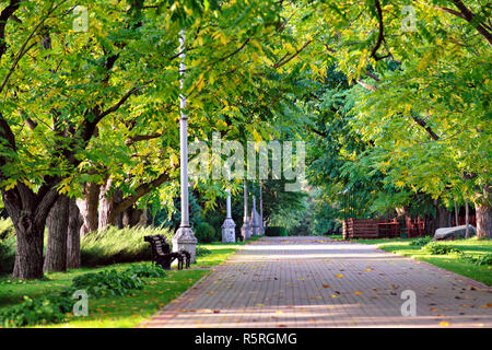 Autumn landscape - beautiful autumn walkway in park. walnut alley. Sunny autumn day. - Stock Photo