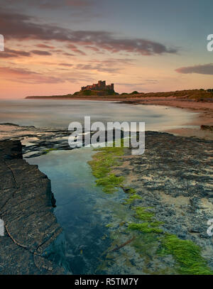 Bamburgh Castle, Northumberland, United Kingdom at sunrise on a summer morning as the tide is rising.
