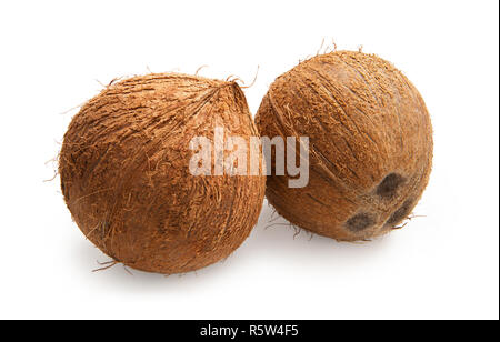 Coconut. Coconuts isolated on white background - Stock Photo