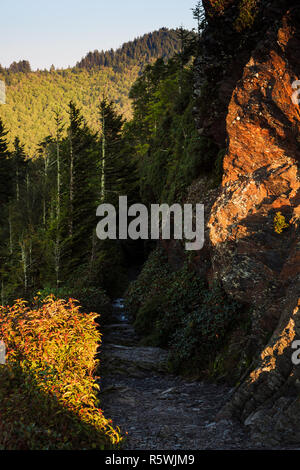 Dramatic view from the Appalachian Trail in Great Smoky Mountains National Park - Stock Photo