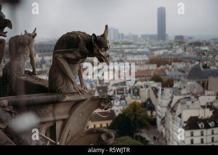 Close-up of gargoyles on Notre Dame Cathedral, Paris, France - Stock Photo