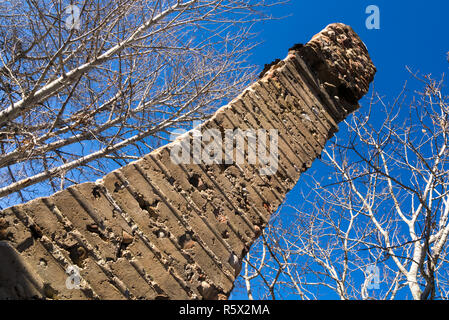 A fireplace chimney from an ruined pioneer house in Fish Creek, Calgary, Alberta, Canada - Stock Photo