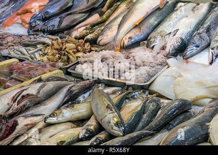 fresh fish and seafood at a market in santiago de chile - Stock Photo