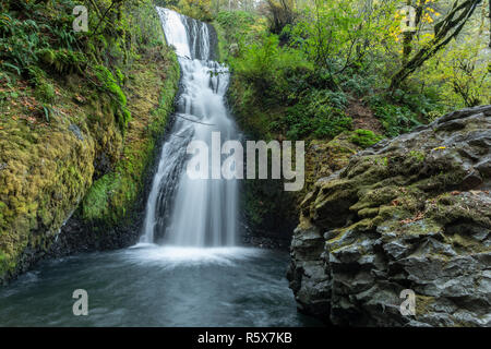 Bridal Veil Falls, 118 feet in height, October, Multnomah County, OR, USA, by Dominique Braud/Dembinsky Photo Assoc - Stock Photo