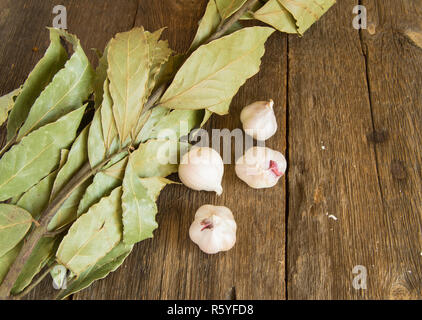 Branch of Bay leaf and garlic on dark old wooden background with copy space - Stock Photo