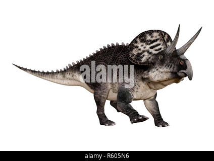 3D Rendering Dinosaur Zuniceratops on White - Stock Photo