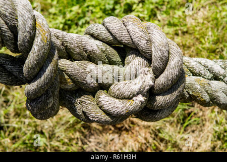 rough,old rope with big knot in front of green background. - Stock Photo