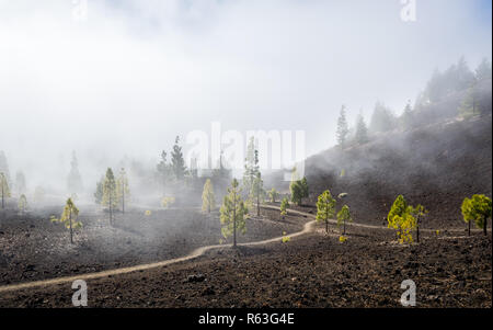 Samara mountain hiking trails in the fog - Stock Photo