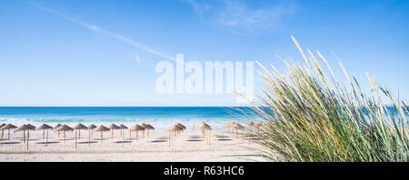 palm leaf beach umbrellas on a deserted beach seen from a dune - Stock Photo