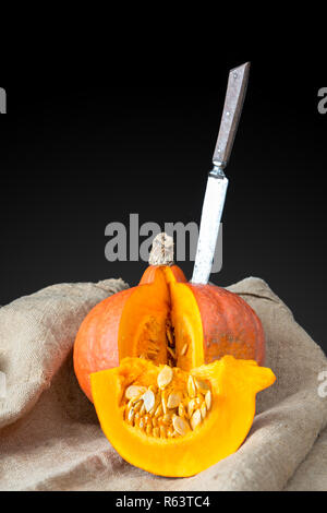 Fresh pumpkin on an old canvas - Stock Photo