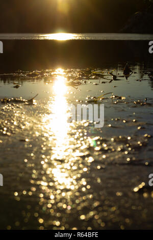 Newly risen sun is reflected on a partly frozen lake, creating a line of different sunlight. The sun itself is not visible. - Stock Photo