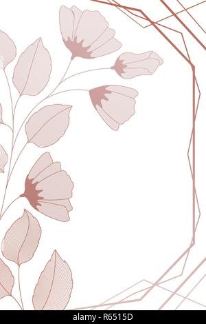 flowers with leaves and geometrical lines isolated icon - Stock Photo