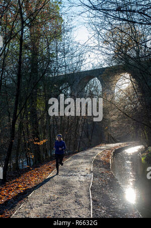 A lone runner on a frosty morning in Almondell and Calderwood Country park, West Lothian. - Stock Photo