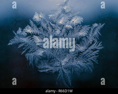 Winter Holidays Season Fantasy World Concept: Macro Image of Natural Ice Crystals Patterns on a Blue Frosted Window Pane.  Hoarfrost Background. - Stock Photo
