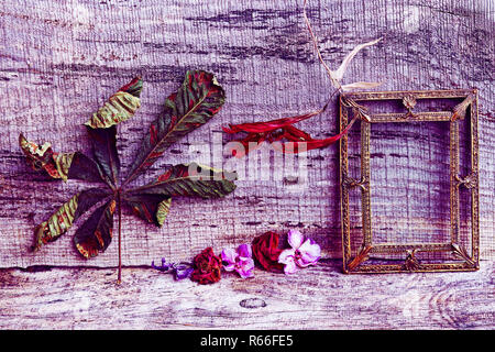 still life with flowers,leaves and a brass picture frame on a wooden background in purple and red - Stock Photo