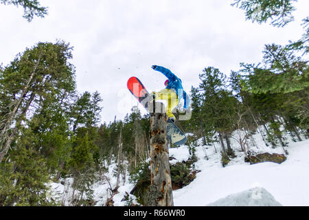 Freestyle snowboarder makes flatland standing on a log in a forest in winter mountains - Stock Photo