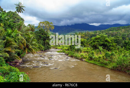 Jungle river in Indonesia - Stock Photo