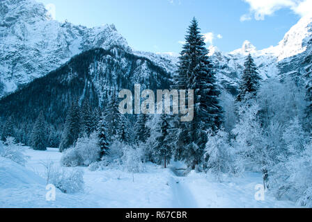 a beautiful snowy and icy winter on the high mountains between forests and woods - Stock Photo