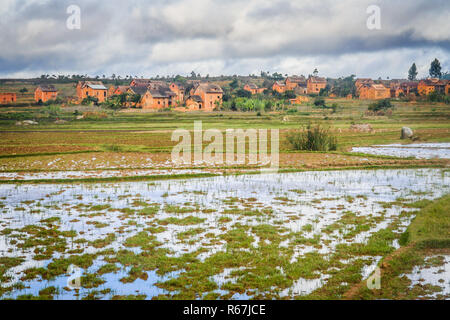 Homes in malagasy village - Stock Photo