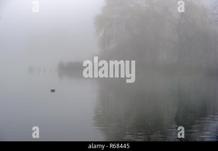 Bolton, Lancashire. 4th Dec 2018. UK Weather: Atmospheric misty scenes at Moses Gate Country Park, Bolton, Lancashire. Freezing temperatures overnight cause a widespread lingering fog over the North West of the country. Picture by Paul Heyes, Tuesday December 04, 2018. Credit: Paul Heyes/Alamy Live News - Stock Photo