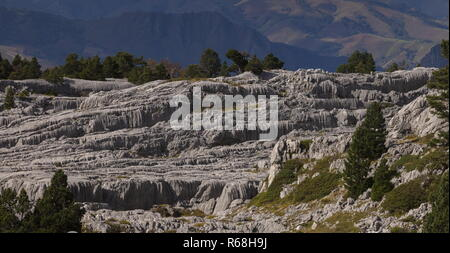 Beautiful high-altitude limestone pavement near the Col de Soudet, (c 1700 metres) in the western French Pyrenees. - Stock Photo