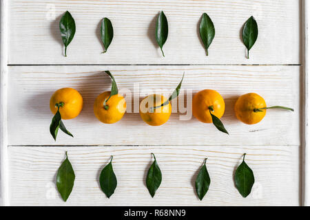 Top view to mandarins and their green leaves, laid out in rows on white wooden background. - Stock Photo