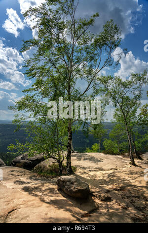 Plateau On The Pfaff Stone In The Elbe Sandstone Mountains - Stock Photo