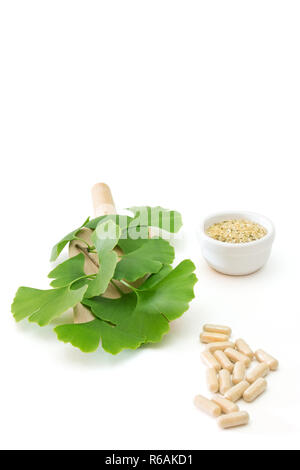 Ginkgo Capsules With Dried Herb And Fresh Leaves On White Background - Stock Photo
