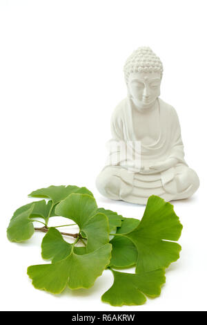 Fresh Ginkgo Leaves With Mortar And Pestle And Buddha On White Background - Stock Photo