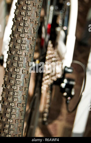 Bicycle Tyre - Stock Photo