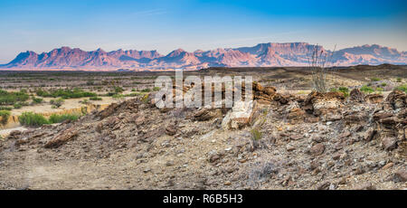 Chisos Mountains, view at sunrise from campsite off River Road in Mariscal Mountain area, Chihuahuan Desert, Big Bend National Park, Texas, USA - Stock Photo