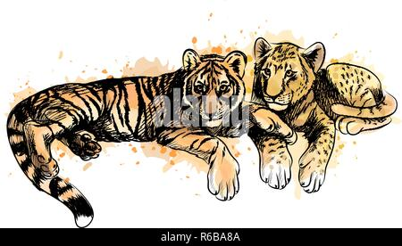 Lion Cub and tiger cub from a splash of watercolor - Stock Photo