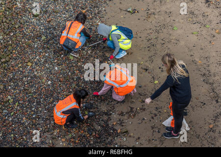 beach cleaners picking up plastic and rubbish from the beach or coast at low tide on the river thames in central london. - Stock Photo